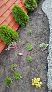Wykonanie ogrodów